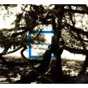 CD de Blu l'Azard - Enfestar