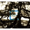 CD Blu l'Azard - Enfestar
