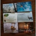 assortiment 6 cartes Bona annada