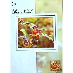 carte Bon Nadal (Joyeux Noël en occitan)