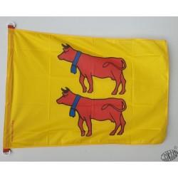 Drapeau béarnais - Biarn toustem - drapèl bearnés - drapeau vaches Béarnaise