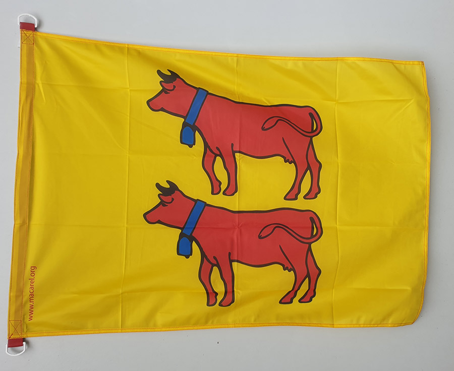 drapeau béarnais